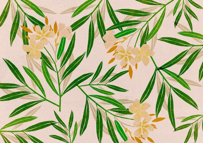 Oleander.grner_670