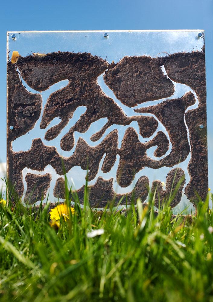 Kerstin-Kromm